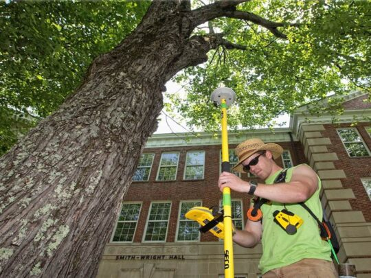 Arborist Consultations-Dayton Tree Trimming and Stump Grinding Services-We Offer Tree Trimming Services, Tree Removal, Tree Pruning, Tree Cutting, Residential and Commercial Tree Trimming Services, Storm Damage, Emergency Tree Removal, Land Clearing, Tree Companies, Tree Care Service, Stump Grinding, and we're the Best Tree Trimming Company Near You Guaranteed!