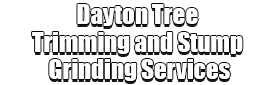 Dayton Tree Trimming and Stump Grinding Services Logo-We Offer Tree Trimming Services, Tree Removal, Tree Pruning, Tree Cutting, Residential and Commercial Tree Trimming Services, Storm Damage, Emergency Tree Removal, Land Clearing, Tree Companies, Tree Care Service, Stump Grinding, and we're the Best Tree Trimming Company Near You Guaranteed!