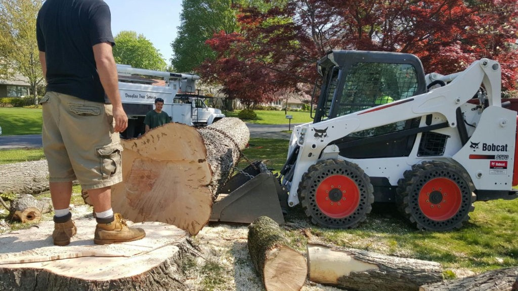 Huber Heights-Dayton Tree Trimming and Stump Grinding Services-We Offer Tree Trimming Services, Tree Removal, Tree Pruning, Tree Cutting, Residential and Commercial Tree Trimming Services, Storm Damage, Emergency Tree Removal, Land Clearing, Tree Companies, Tree Care Service, Stump Grinding, and we're the Best Tree Trimming Company Near You Guaranteed!